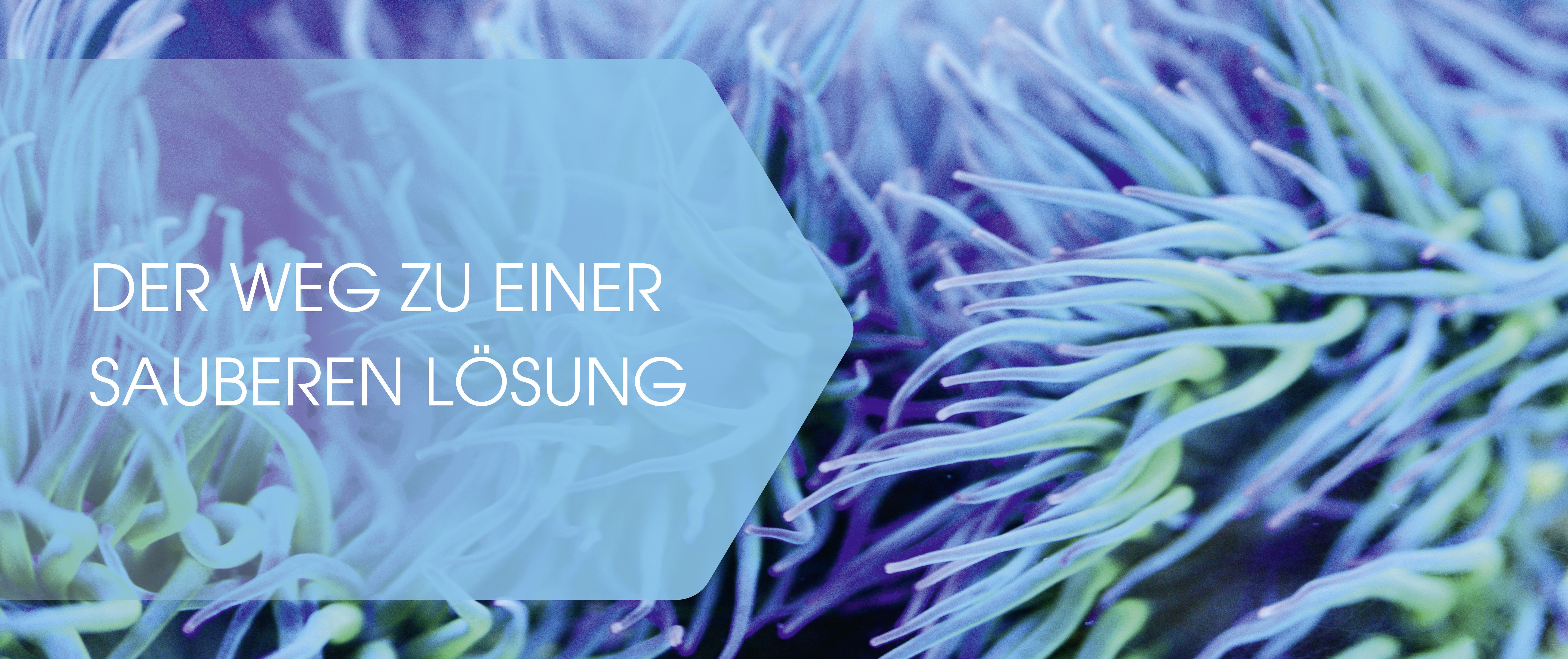 roll-ex Feinstrainer Lösungen UTH GmbH